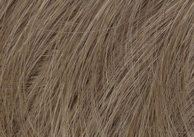 M14S_Dark-Ash-Blonde